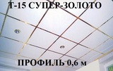 Поперечный профиль 0,6м СУПЕР-ЗОЛОТО Т-15 Албес