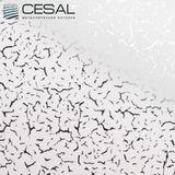 Потолочная кассета Cesal В34 Иней белый (300х300 мм)