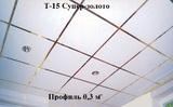 Поперечный профиль 0,3м СУПЕР-ЗОЛОТО Т-15 Албес